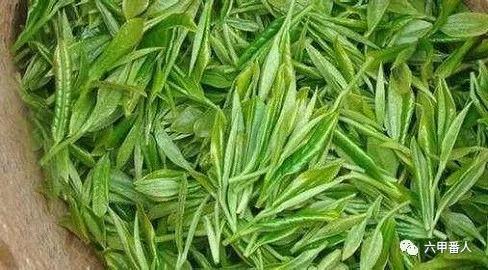 中国十大名茶有哪些说法?传统名茶和新茶种有哪些?_茶叶-名茶-毛尖-中国-祁门