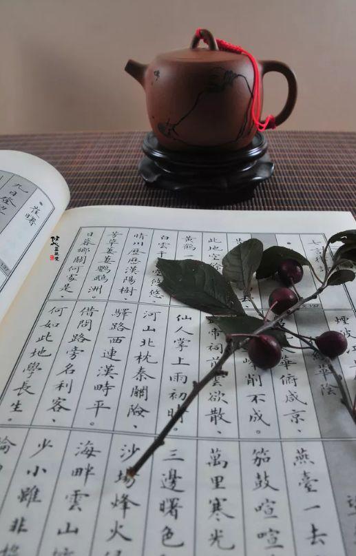 一卷诗书一杯茶-品味那悠悠的诗韵_诗韵-诗书-逆风-苏州-西江